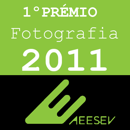 1º Prémio fotografia 2011